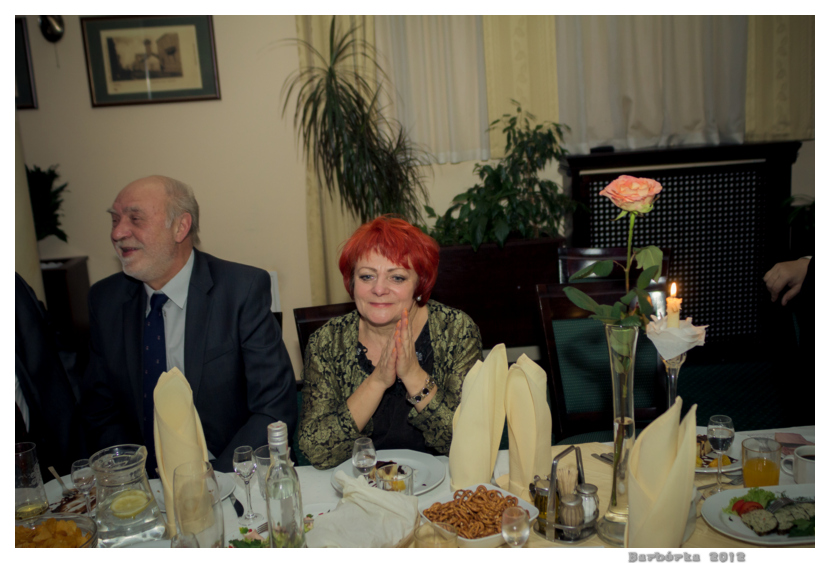 barborka_2012_103