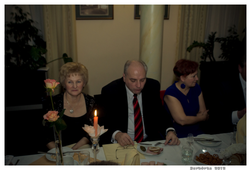 barborka_2012_105