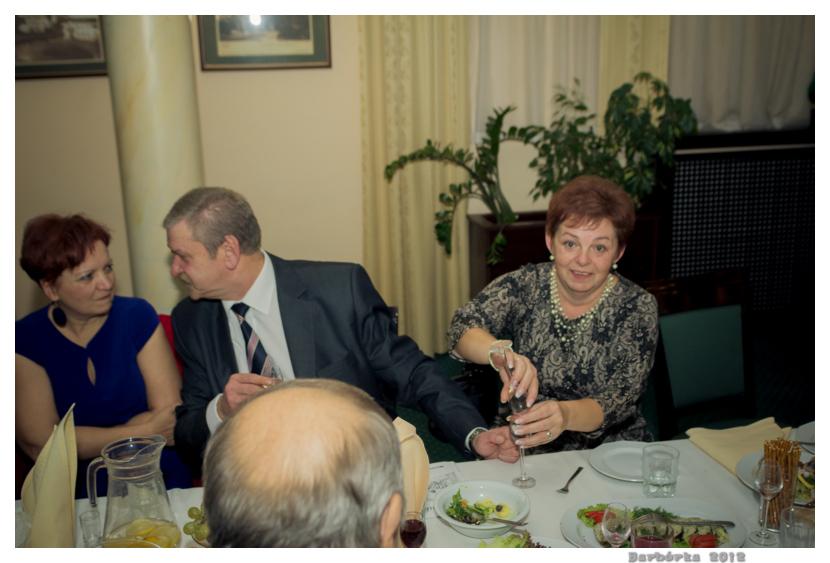 barborka_2012_106